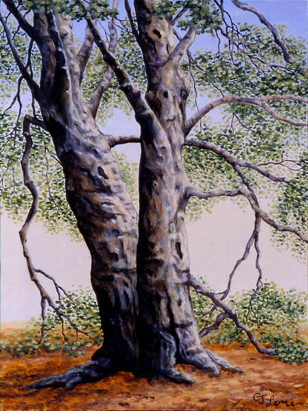 "Twin Beech, oil on panel, 12 x 9"", 2000 (Private Collection)"